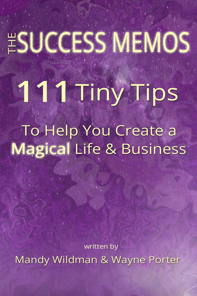 The Success Memos by Mandy Wildman and Wayne Porter